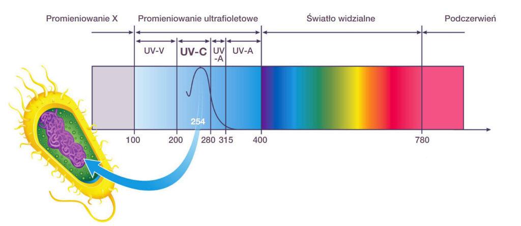 promieniowanie UV-C w klimatyzacji domowej