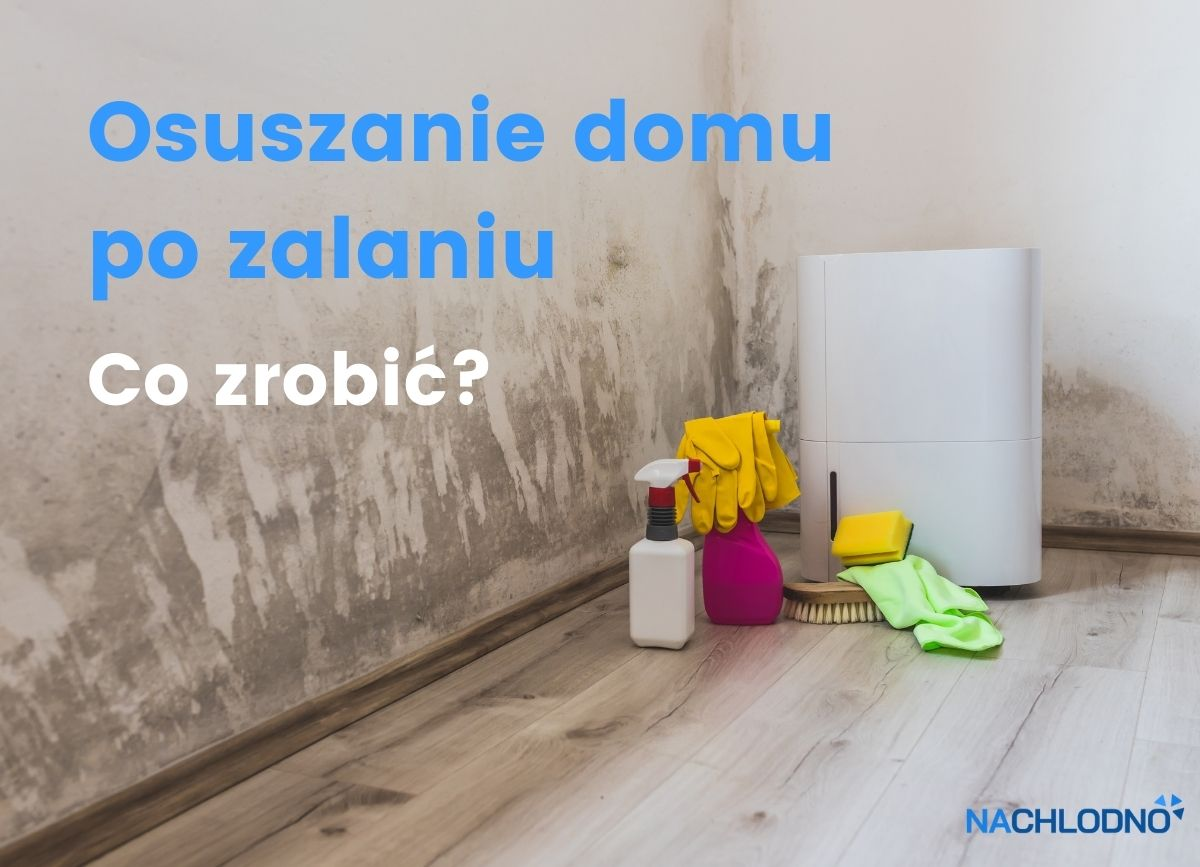 Osuszanie po zalaniu – nachlodno.pl